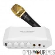 HD-Hyundal HDMI Karaoke Mixer - commandes de Volume individuel pour l'entrée, effet d'écho, double Microphone