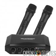 HD-Hynudal Machine de Karaoke - Echo mélangeur, deux micros sans fil, YAMAHA Chipset, prend en charge le téléphone + PC
