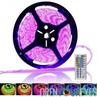 5 mètres 300 x RGB couleur changer de bande de LED - 72W, étanche IP65, notation, télécommande IR