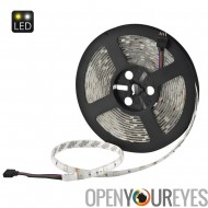 5 meter 36W RGB LED Light Strip - SMD5050, IP65, 30 LED par mètre, 20 clés musique infrarouge télécommande