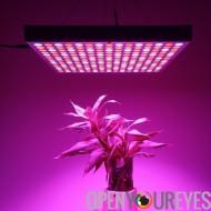 45 w mené élèvent la lumière - 225LED lumières, bleu et rouge LED, 2160 Lumen, stimule la croissance, le rendement et la florai