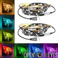RGB LED Light String - 60 LEDs par chaîne, 2 cordes, 7 couleurs, 5 Lumen par LED, de vie 50 000 heures, sortie USB, longueur 2