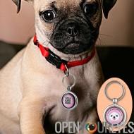Pendentif chien anti-perte - Scan QR Code pour trouver les coordonnées du propriétaire